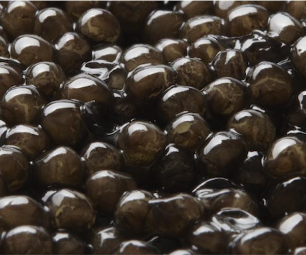caviar-naccarii